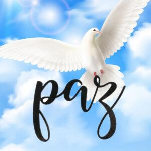 palavaras de paz